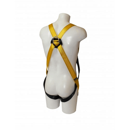 RGH2 Safety Harness